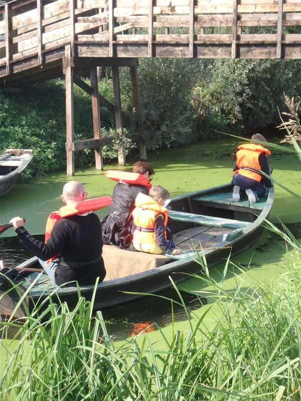 Les visites libres du marais de Saint-Omer